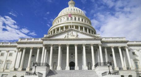 117th Congress officially sworn in amid pandemic crisis